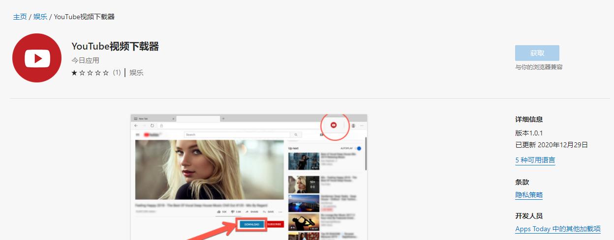 YouTube的视频下载器-Microsoft Edge插件